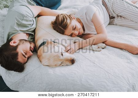 Nice Young Couple Sleeping In Bed With Their Dog