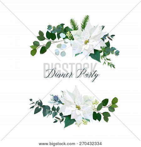 White Poinsettia Flowers, Christmas Greenery, Emerald Eucalyptus, Fir, Mix Of Seasonal Plants Vector