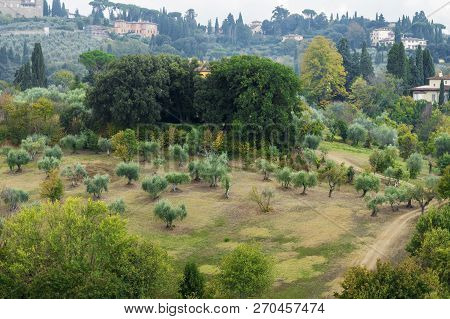 Beautiful Landscape From Above, A Panorama Of The Historical View Of Florence From The Point Of Bobo