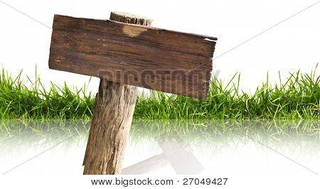 Holz Zeichen und Gras mit Reflektion isoliert auf weißem Hintergrund.