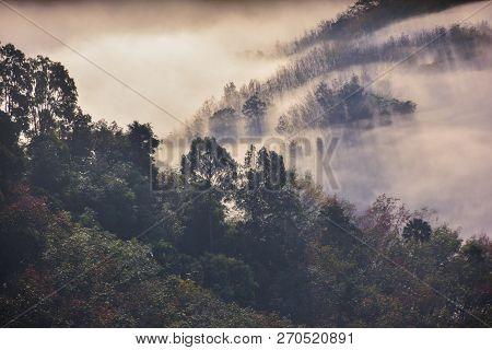 Mountain Mist Background At Khao Soon Mine, Nakhon Si Thammarat, Thailand