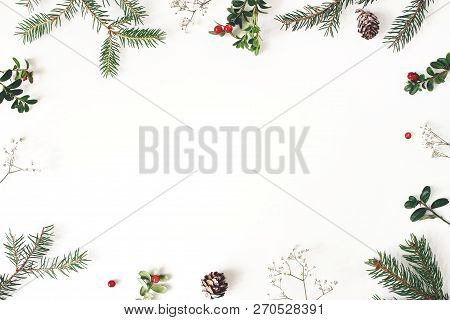 Christmas Floral Frame, Decorative Border. Winter Composition Of Red Cranberry Branches, Babys Breat