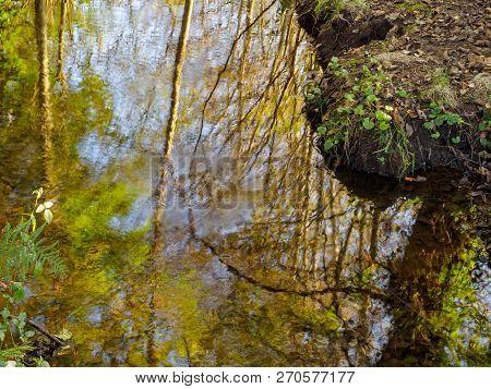 Reflections In The Amenal River - Arca O Pino, Galicia, Spain