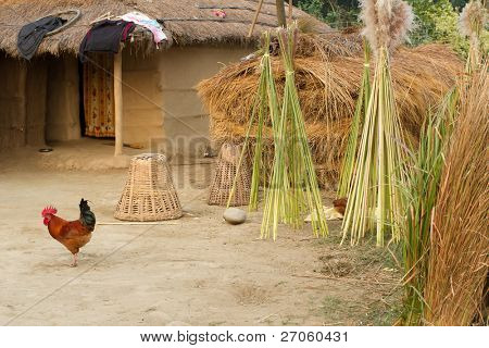 traditional rural farm hut in Terai, Nepal