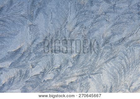 Crystal White Frost Pattern On A Cold Morning Glass