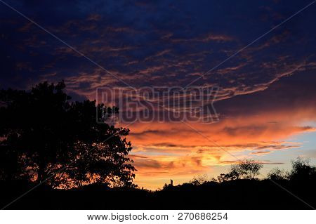 Silhouette Tree Amazing Cloud Sky Sunset / Orange Dark Storm Scary Dramatic Clouds On Sunset Beautif