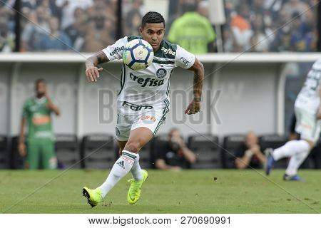Rio, Brazil - November 25, 2018: Felipao Coach In Match Between Vasco And Palmeiras By The Brazilian