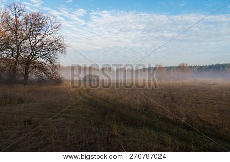 Morning Autumn Landscape With A Rural Road Through Misty Meadow, Disappearing In The Foggy Forest On