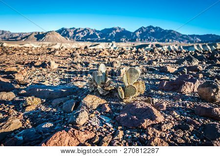 Death Valley National Park Scenes In California