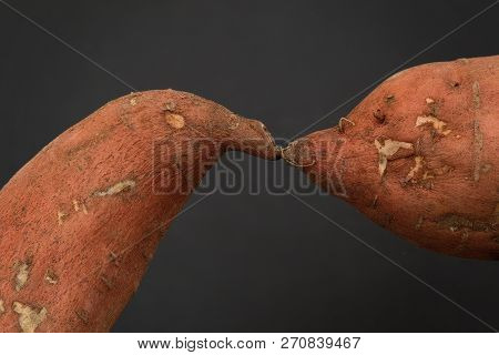 Two Sweet Potatoes Kissing On Plain Background