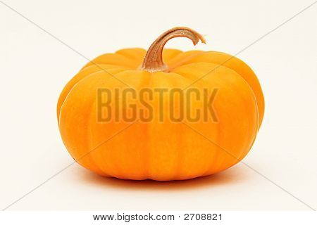 One Mini Pumkin