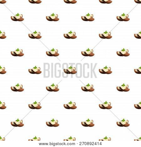 Brazil Nut Pattern Seamless Vector Repeat For Any Web Design