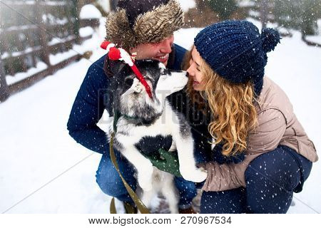 Family Portrait Of Cute Happy Couple Hugging With Their Alaskan Malamute Dog Licking Mans Face. Funn