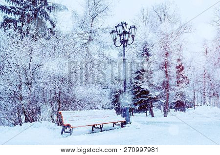 Winter Christmas landscape with falling snowflakes - bench covered with snow among frosty park winter trees and street lanterns, winter landscape with Christmas mood