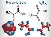 Pyruvic acid (pyruvate) molecule. It is the simplest of the alpha-keto acids. Structural chemical formula and molecule model. Vector illustration poster