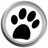 Paw button on white background - vector poster