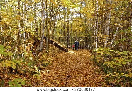 King City, Ontario / Canada - 10/17/2008: Child Walking In The Natural Parkland With The Grand Paren