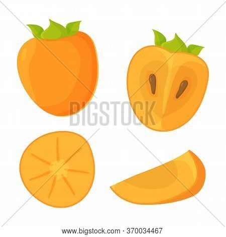 Colorful Bright Set Of Whole, Half, Slice And Quarter Persimmon. Vegan, Fruit, Vitamin, Eco Food, Or