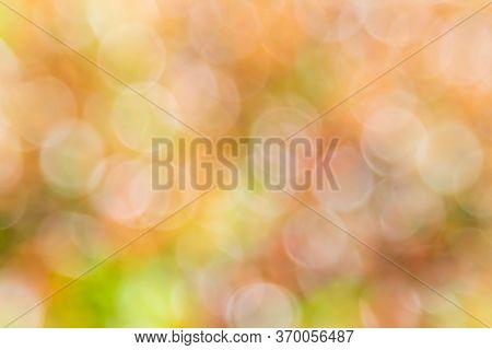 Bokeh Background With Natural Light, Green, Yellow, Orange With Blurred