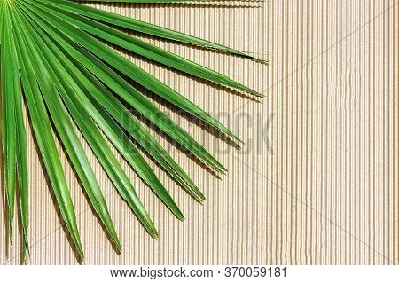 Palm Leaf On Kraft Paper Texture Background With Vertical Strips. Top View, Copy Space.