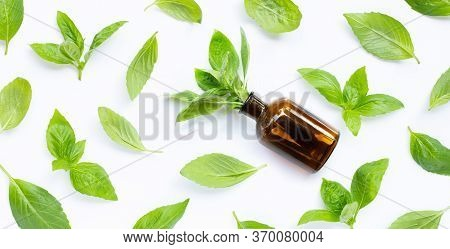 A Bottle Of Essential Oil With Fresh Basil Leaves On White Background.