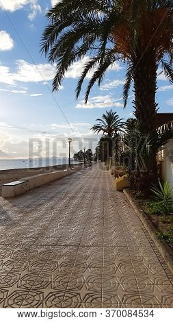 Promenade Overlooking The Sea And Palm Trees Along The Edge Of The Promenade, The Mediterranean Land