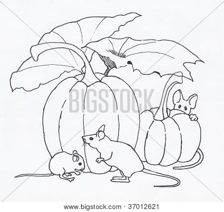 Mice With Pumpkins, Outline Drawing