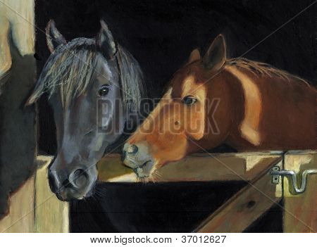 Two Horses At The Stall Gate