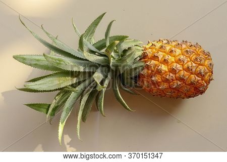 Single Whole Pineapple Tropical Fruit Or Ananas Isolated On White Background. Whole Ananas With Leav