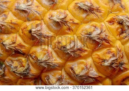 Close-up Of Skin Of Ripe Pineapple. Fresh Pineapple Texture. Abstract Nature Background Texture Of P