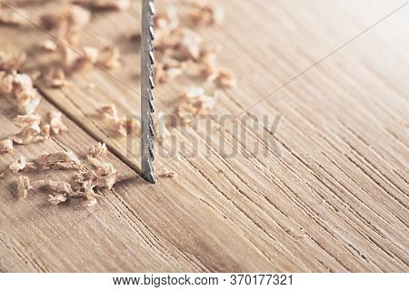Fret Saw Cutting Wooden Oak Plank. Jig Saw Cut Clean Timber Plank.