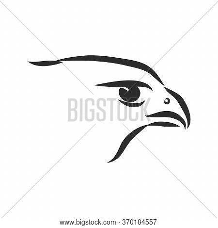 Black And White Illustration. Sketch Of Bird For Tattoo Art. Detailed Hand Drawn Eagle For Tattoo On