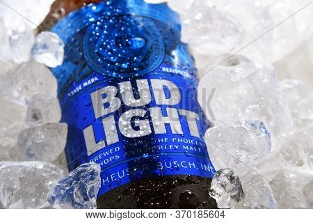 Bottle Of Bud Light Beer In Crushed Ice