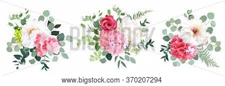Pink Hydrangea, Rose, White Peony, Sage Greenery, Flowers, Eucalyptus Vector Collection. Floral Brig