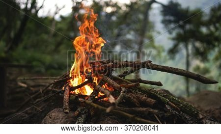 Big Bright Campfire In The Woods, Camping With Barbecue, Picnic And Songs Around The Fire, Weekends
