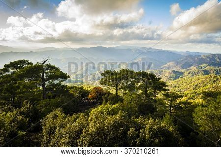 Pano Platres Landscape In Troodos Mountains, Cyprus. Sunset. Travel And Tourism.
