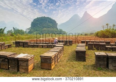 wooden hives in the outdoors guilin,guangxi, china