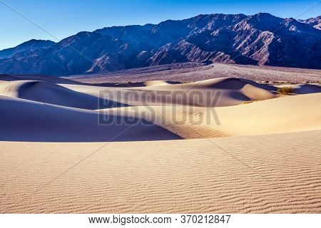 Magical desert morning. Mesquite Flat Sand Dunes - dunes in Death Valley. USA, California. Easily accessible dunes are located along Road 190. The concept of extreme, active and photo tourism