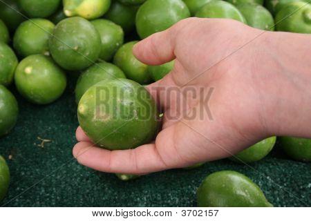 Choosing Limes