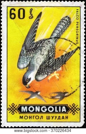 Saint Petersburg, Russia - May 17, 2020: Postage Stamp Issued In The Mongolia With The Image Of The