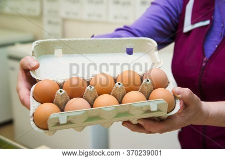 Packing Eggs In The Hands Of A Woman