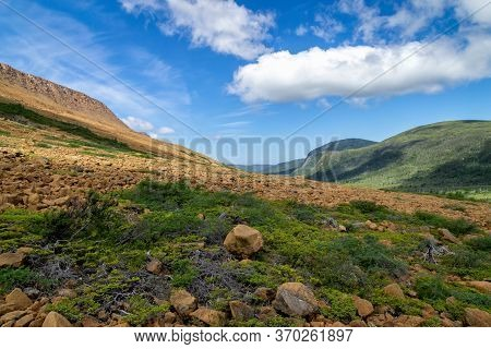 Rocky Tablelands Hillside With Green Brush, Gros Morne, Newfoundland, Canada