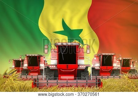 A Lot Of Red Farming Combine Harvesters On Rye Field With Senegal Flag Background - Front View, Stop
