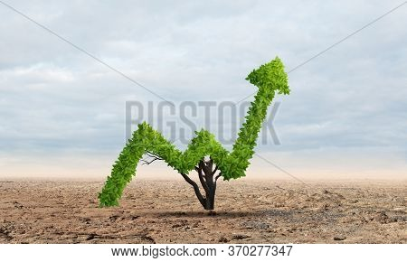Green Plant In Shape Of Of Grow Up Trend In Desert. Business Analytics And Statistics. Friendly Ecos
