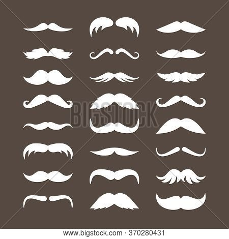 Mustache Set. Stylish Look Mustache Curly White Horseshoe Imperial Pencil Retro Pyramid Italian Narr