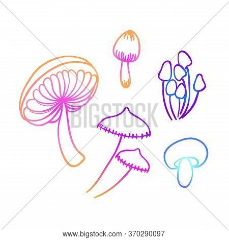 Magic Mushrooms. Psychedelic Hallucination. Vibrant Vector Illustration. 60s Hippie Colorful Art In