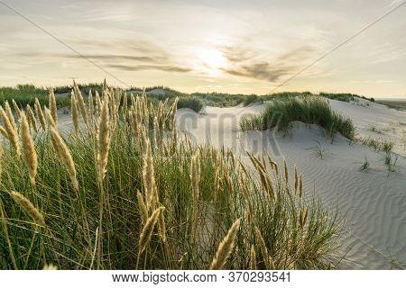 Beach With Sand Dunes And Marram Grass With Soft Sunrise Sunset Back Light. Skagen Nordstrand, Denma