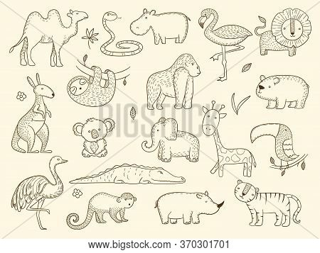 African Wildlife Animals. Jungle Safari Characters Tiger Elephant Crocodile Monkey Vector Set. Wildl