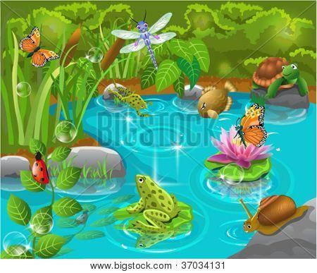 Tiere im Teich