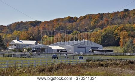 Milton, Ontario / Canada - 10/19/2008: View Of A Horse Farm At Niagara Escarpment In Autumn, Milton,